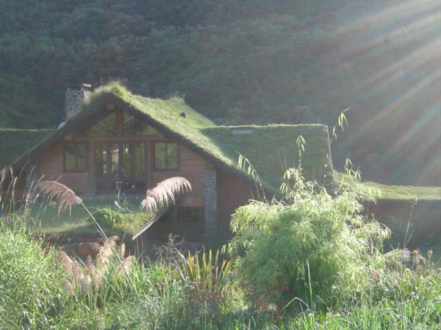 Curucaca telhado jardim