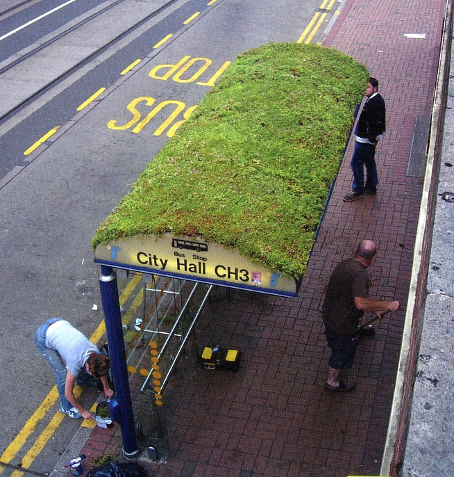 ponto de onibus verde
